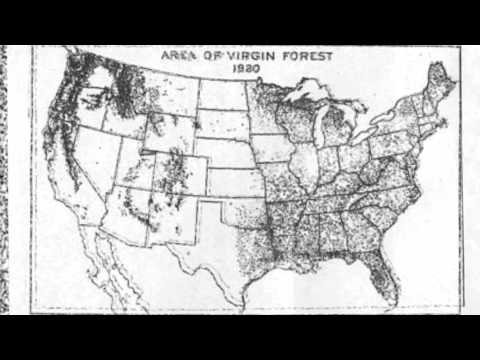 Old Growth Forests, United States, 1620-1990
