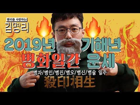 [2019기해년 명리학 운세] 병화 일간 (병자/병인/병진/병오/병신/병술 일주)