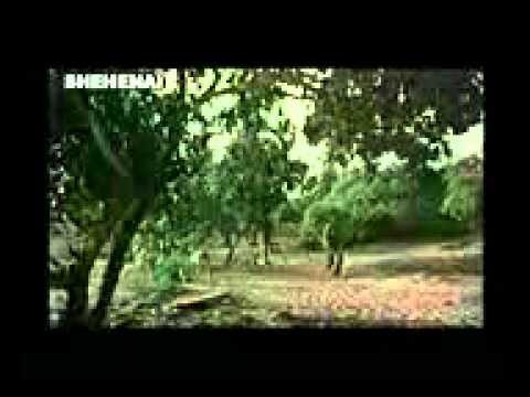 gopo hele bhi soto oriya movie hi ca782