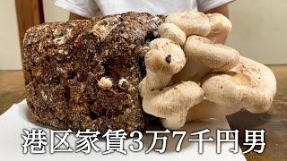 菌床から育てたしいたけを焼いてかっこつける港区家賃3万7千円男
