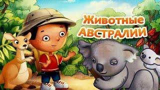 Животные Австралии.Мультик для Детей и Малышей.Познавательный Мир Зверей.