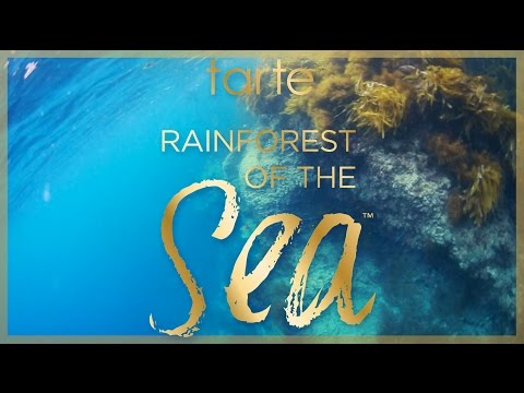dive into beauty with tarte cosmetics rainforest of the sea
