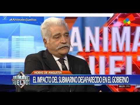 """Jorge Asís en """"Animales sueltos"""" de Alejandro Fantino - 22/11/17"""