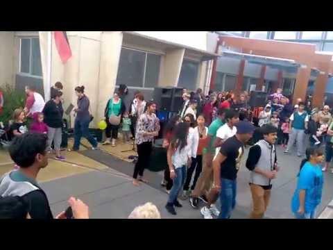 Hobart Flash Mob
