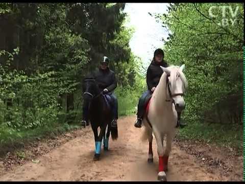 Владелица конюшни Елена Лешик: Лошади - это часть моей жизни!