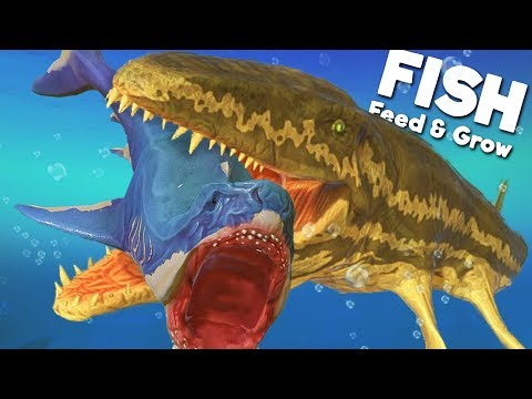 *NEW* PREHISTORIC PROGNATHODON IS THE ULTIMATE PREDATOR! | Feed And Grow Fish