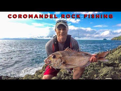NORTH COROMANDEL ROCK FISHING - New Zealand