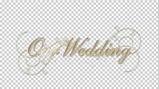 Свадебная надпись 2(англ.яз)       слайд шоу, слайд шоу из фотографий