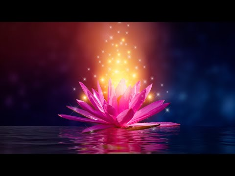 Manifest Miracles Raise Your Vibration, Elevate Happiness Frequency, Serotonin Levels