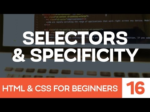 HTML & CSS For Beginners Part 16: CSS Selectors And Specificity