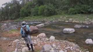 """Pesca de Dorado con mosca """"rata"""" - Río Dorado- Salta"""