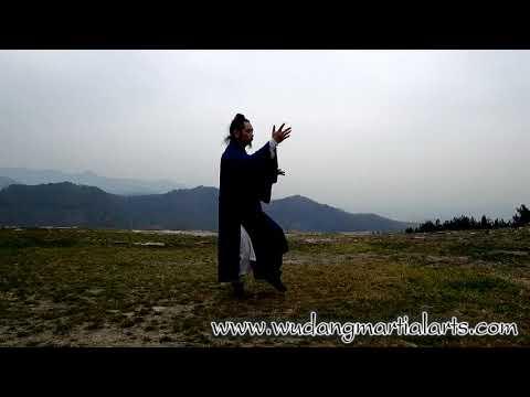 Wudang Tai Chi 108 by Master Chen Shiyu
