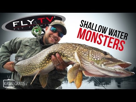 FLY TV - Shallow Water Monsters - Fly Fishing for Big Pike