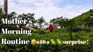 Mom's morning routine with our Aspins and a Gecko surprise - Farm Vlog - Marielle Vlogs