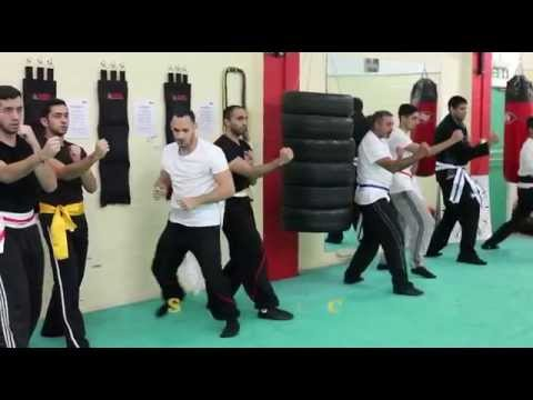 Learn Wing Chun Training Techniques Online