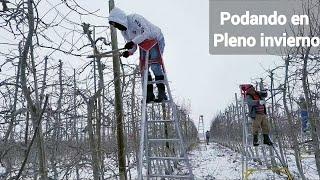 Gente Mexicana trabajando con frio y nieve/ESTADOS UNIDOS