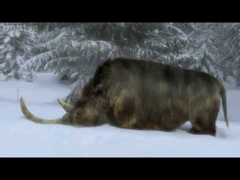 The End of the Woolly Rhino - Ice Age Giants - Episode 3 Preview - BBC Two