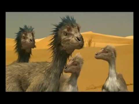 Theropodák bolygója: Velociraptor