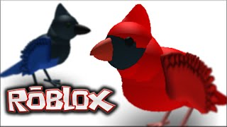 ROBLOX Bird Simulator - BA CAW!!