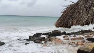 Effects of hurricane Matthew on Aruba beach near Casa del Mar and Aruba Beach Club