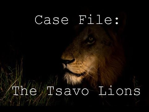 The Ghost and The Darkness: The True Story of the Man-eating Lions of Tsavo