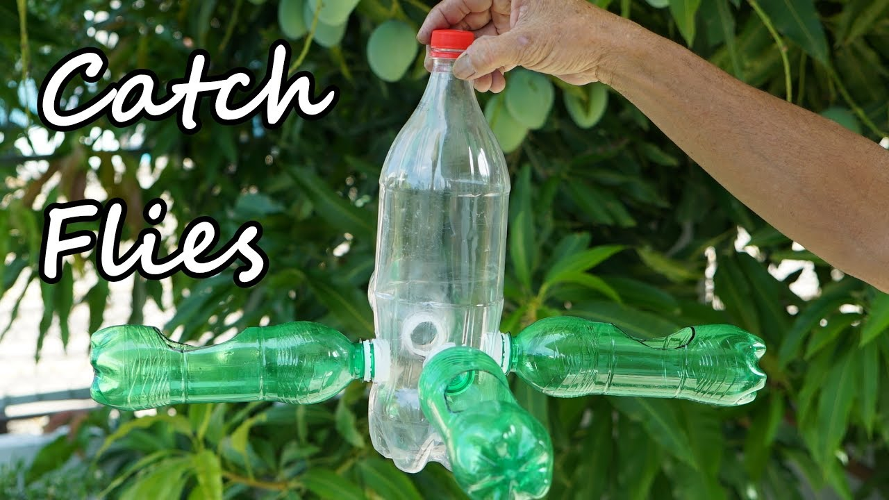 how to make a homemade fly trap with plastic bottle youtube. Black Bedroom Furniture Sets. Home Design Ideas