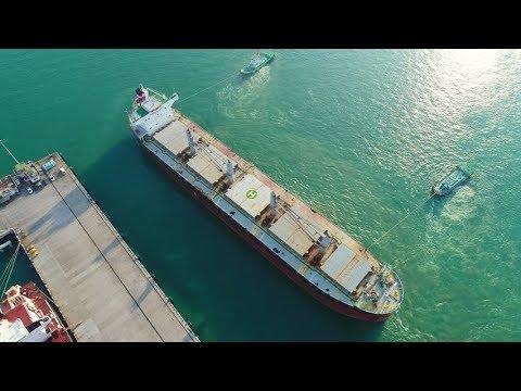 Berthing Bulk Carrier