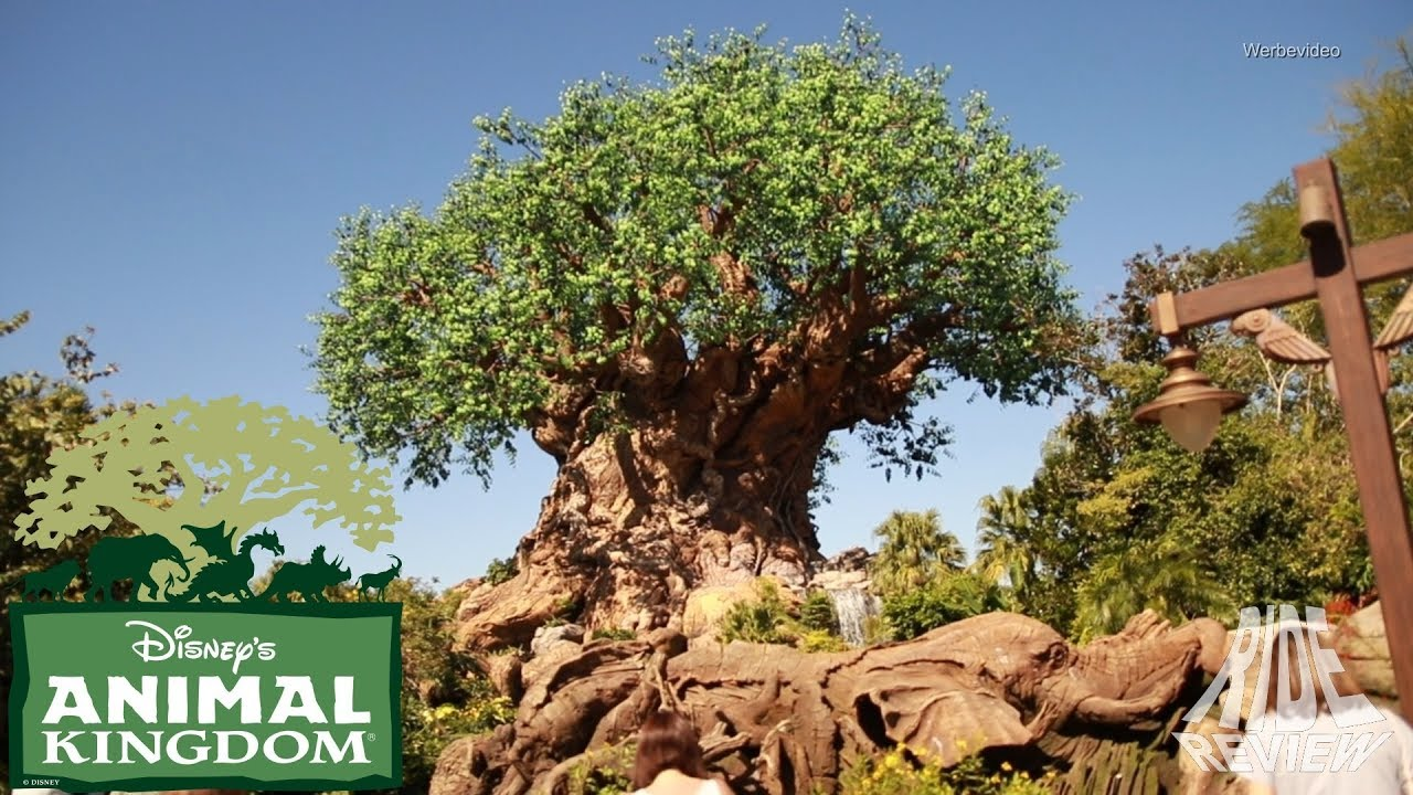 [Doku] Disney's Animal Kingdom