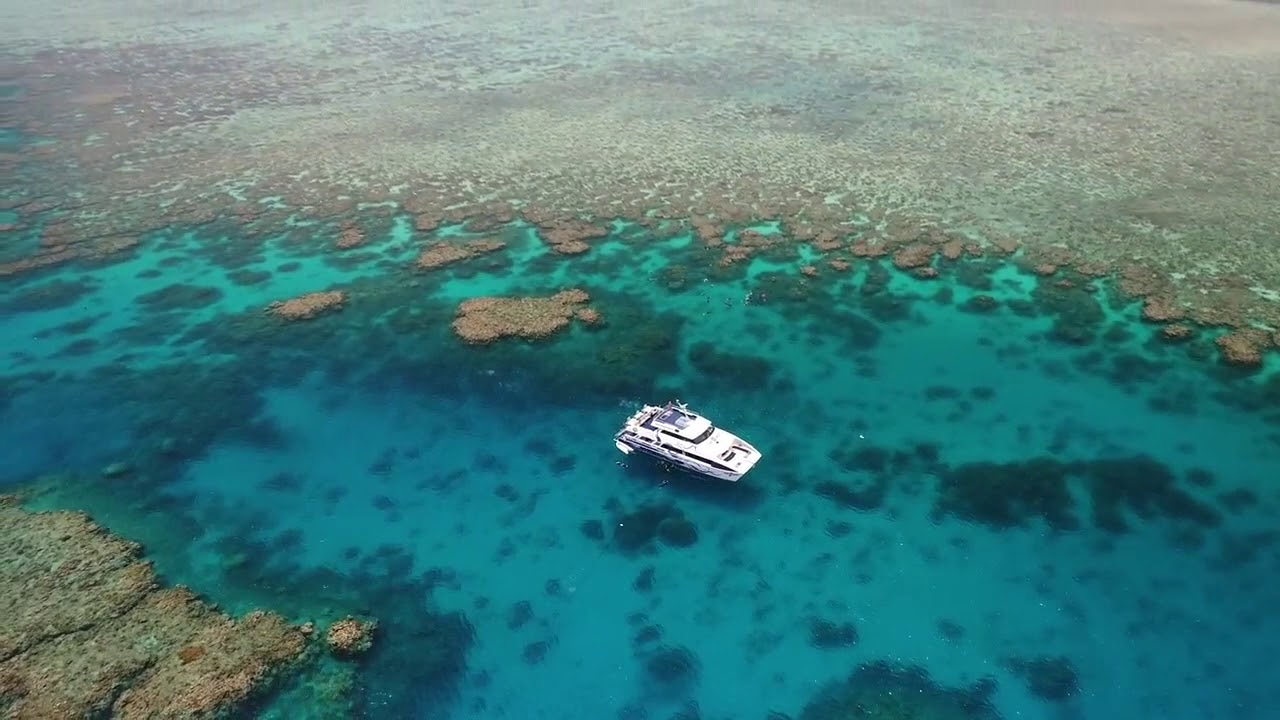 video Great Barrier Reef Day Trip (Divers Den)