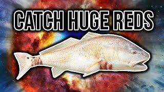 Surf Fishing Guide for Bull Red Drum | How To Catch Redfish - Surf fishing Tips for Redfish