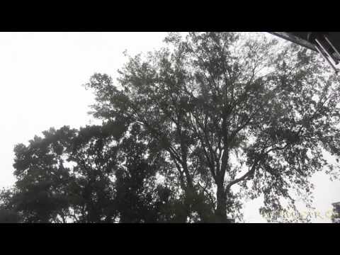 Longview Thunderstorm - VLog 169, 08/10/2013