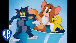 Tom & Jerry | Here Comes The Birds! | Classic Cartoon Compilation | WB Kids