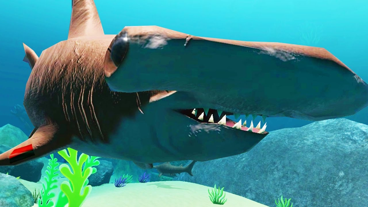 New hammerhead shark hilarious glitches new feed and for Feed and grow fish online