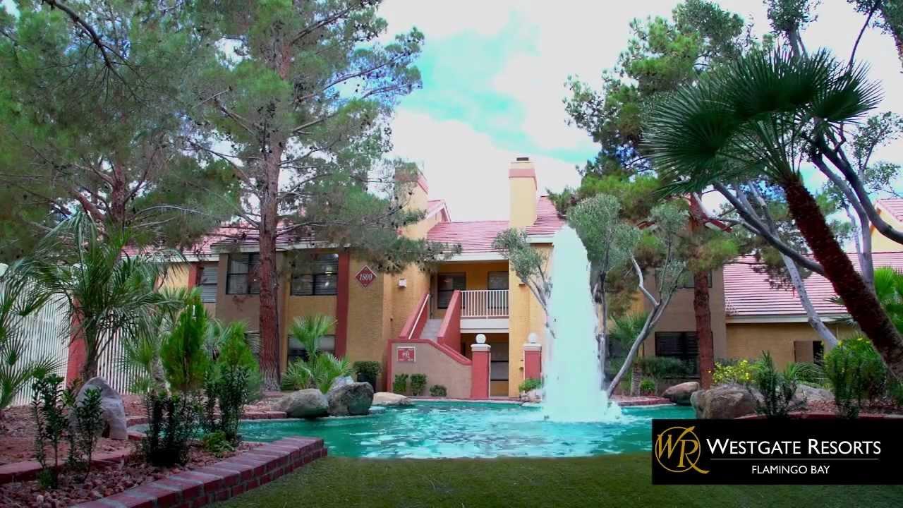 Westgate Flamingo Bay Resort In Las Vegas Nv Youtube