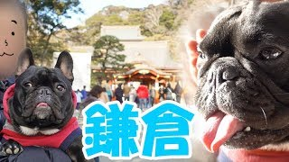 鎌倉のメイン通りのちょっと裏道(?)にココが入って行って、案内して...
