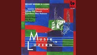 Sinfonie No. 2 B-Dur: I Allegro Moderato