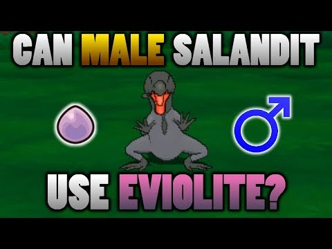 Can A Male Salandit Use Eviolite In Pokemon Ultra Sun And Moon?