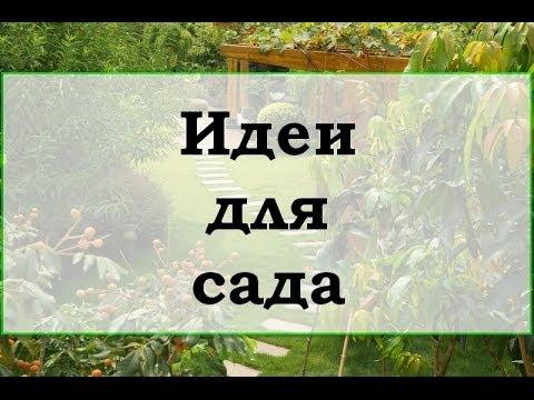 видео: Идеи для сада своими руками
