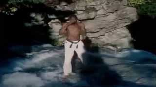 Willie Williams (14/07/1951) es un ex karateka kyokushin de origen ...