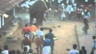 kottapuram thiruvallayanad kavu1