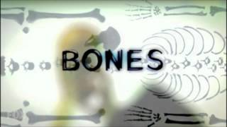 Download Bones Theme Season 1 - 7 MP3 song and Music Video
