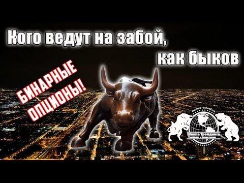 Бинарные Опционы - Кого ведут на забой, как быков.