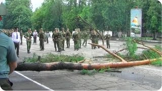 Timber! | Tree Attacks Russian Army