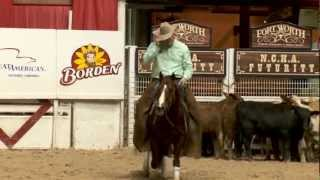 High Brow CD - NCHA Horse of the Year