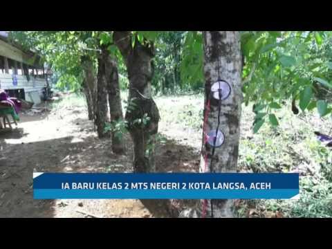 Nauval, Bocah Penemu Pohon Listrik dari Aceh