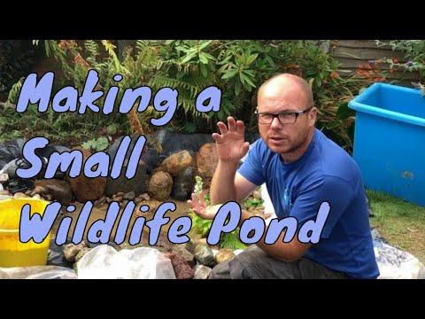 How to make a pond - Small / Mini Wildlife Pond Construction
