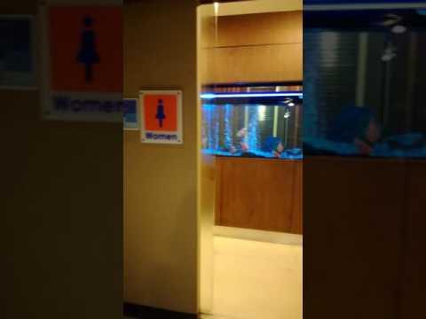 Koh Samui Airport Toilett