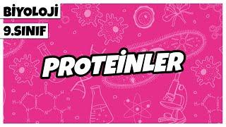 9. Sınıf Biyoloji - Proteinler | 2021