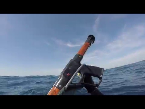 Lost Scuba Diver Circled by Shark
