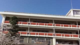 伝統のある素敵な校舎とダンス部のコラボレーションです! 今年も1年よ...